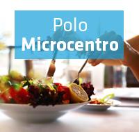 polomicrocentro